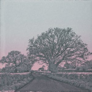 Sunset 2 Limited Edition Screen Print