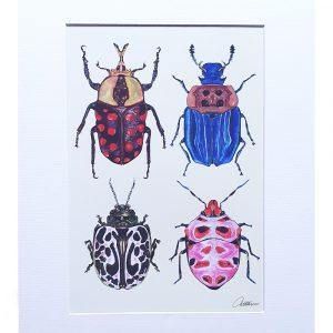 Beetle_Study_Canvasbutterfly_A3_print