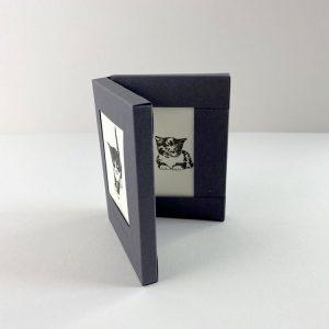 Penguin_Ink_Pussycat_Box_Set_Little_Notes